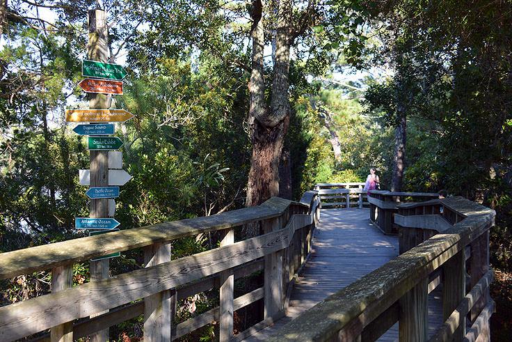 North Carolina Aquarium at Pine Knoll Shores - Morehead.com