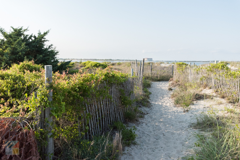 Beach access at Fort Macon State Park