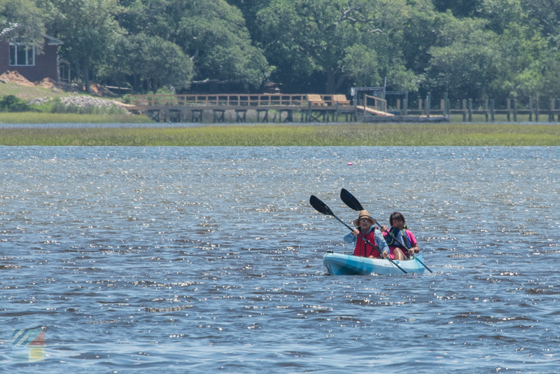 Many aquatic tours are available from downtown Beaufort NC