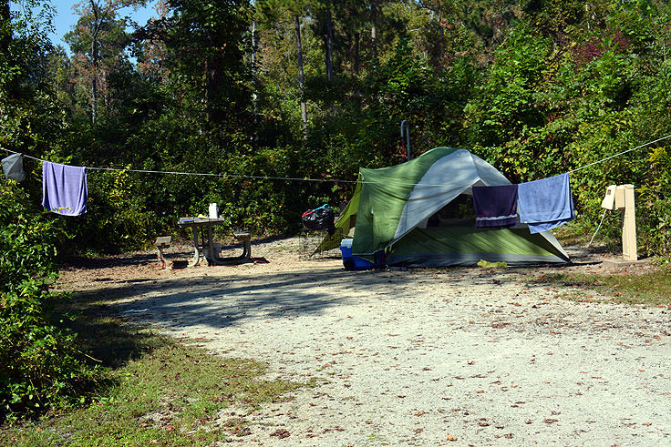 A tent campsite at Neuse River Recreation Area