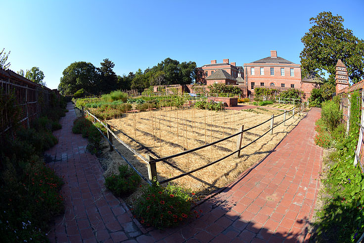 The garden at Tryon Palace in New Bern, NC