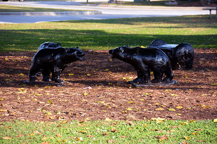 Baby bear sculptures at Union Point Park in New Bern, NC
