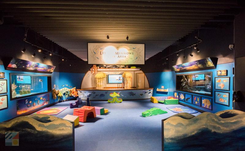 North carolina aquarium at pine knoll shores Atlantic city aquarium hours