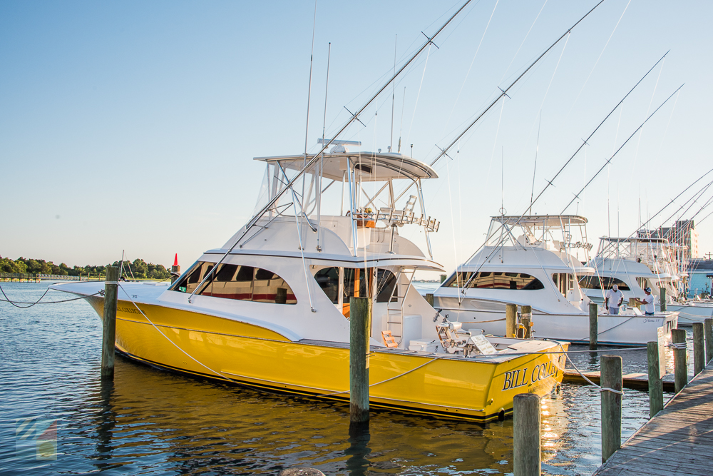 Charter boats in Morehead City NC